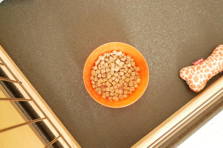 ドッグフード工房お試し馬肉粒を容器に入れた画像