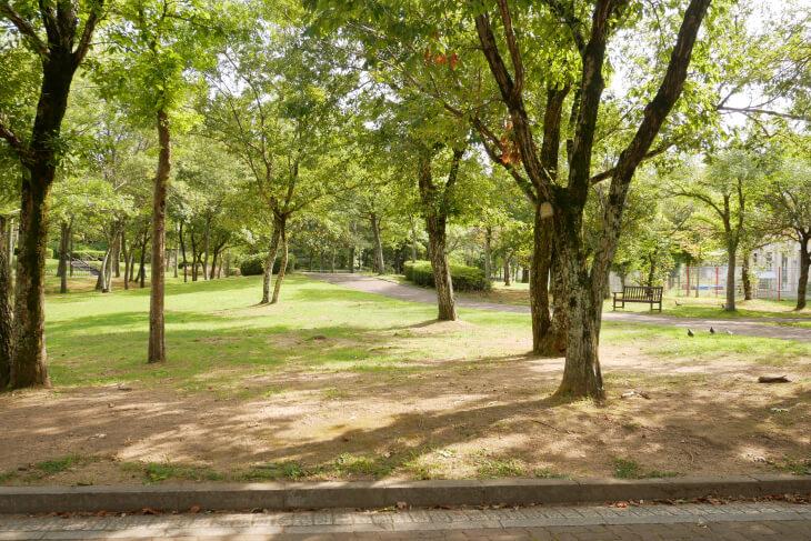 総合福祉ゾーン しあわせの村 ふれあいの広場画像